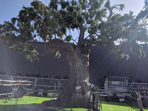 tree 7.jpg