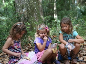 Study suggests nature-based learning prepares children academically