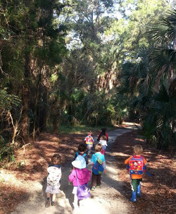 Forest program hike