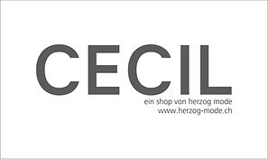 cecil store by herzog mode.jpg