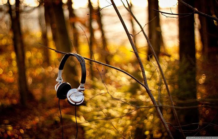 headphones .jpg
