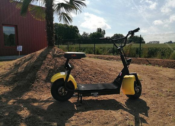 Trotlux TX2 Full - option jaune