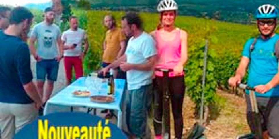 Randonnée Segway + Dégustation dans  les vignes à partir de 49€