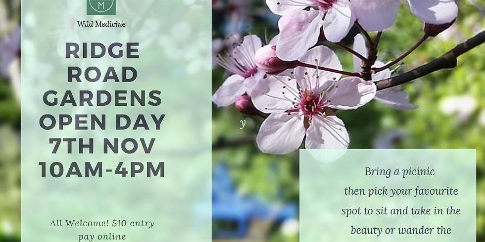 Ridge Road Gardens Open Day