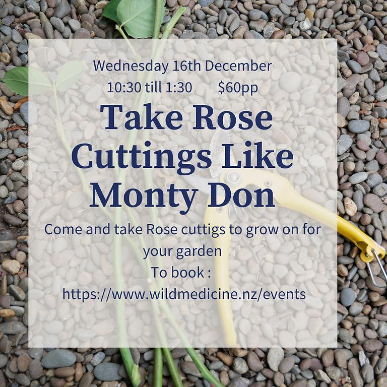 Take Rose Cuttings like Monty Don.
