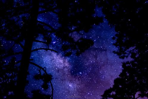 Under the Stars Frame Three