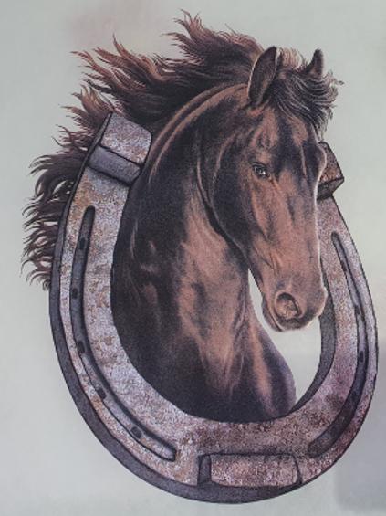 Ferro di cavallo 314