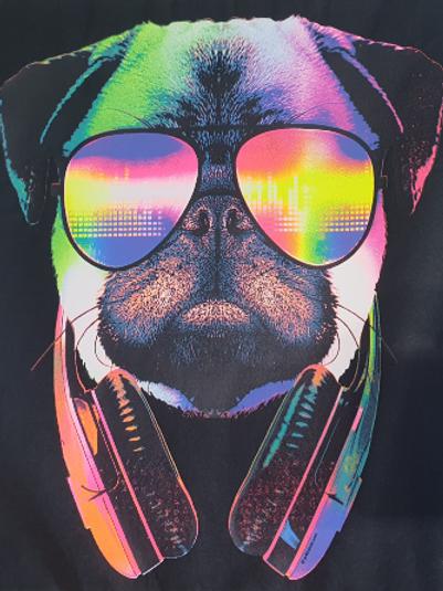 Cane occhiali e cuffie neon 375