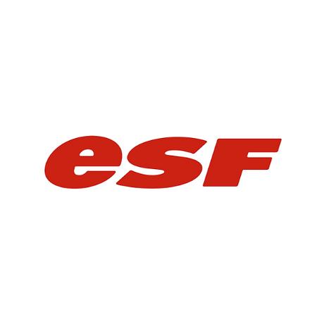 6 ESF.png