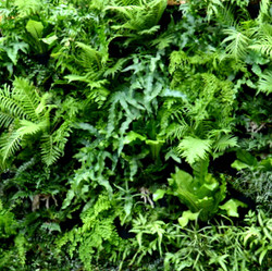 09-Florafelt_Vertical_Garden_Planters.jpg