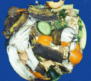 Why and how should we reduce waste?