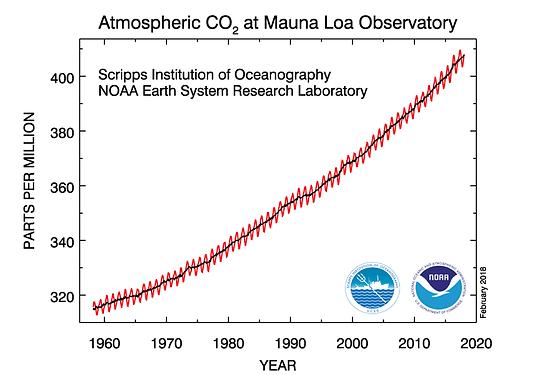 Anstieg der CO2-Konzentration in der Atmosphäre seit 1960