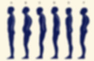 Posture%2520types_edited_edited.jpg