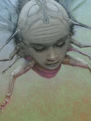 Ladybug (detail)