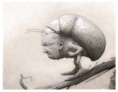 Beetle (original)