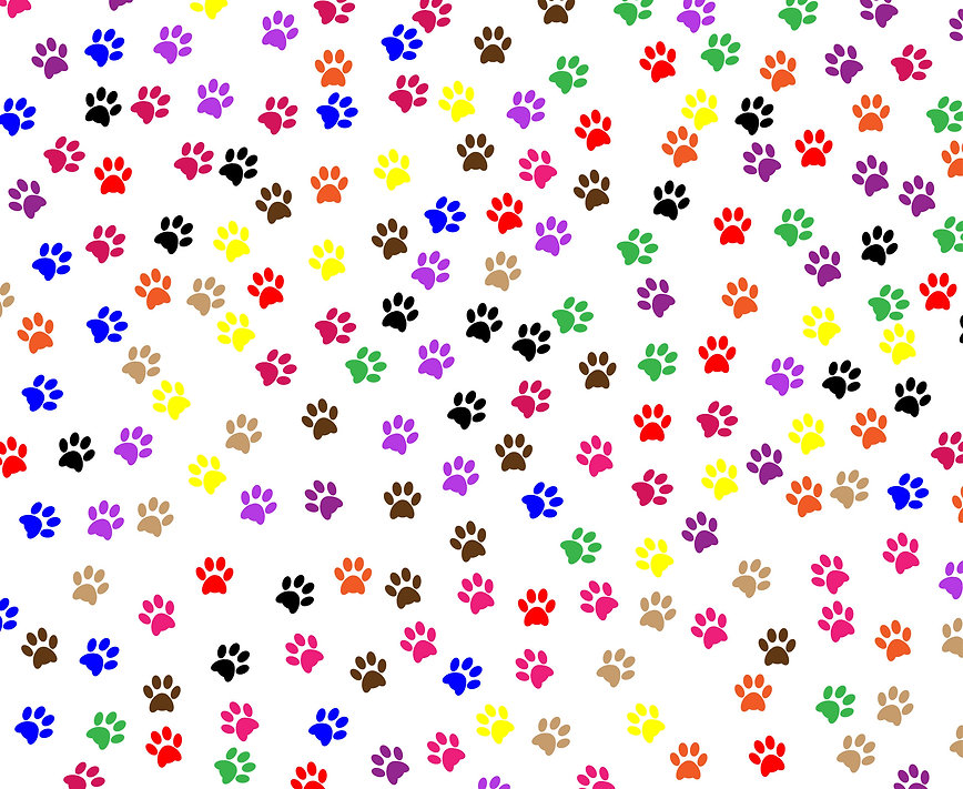 paw-prints-background.jpg