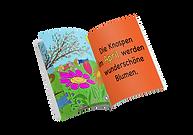 Buch Mockup.png