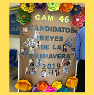 CAM 46