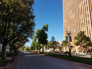 Sunny views around campus