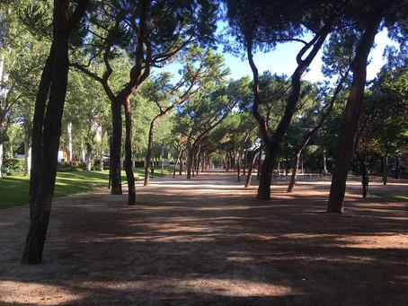 Parque Breogán