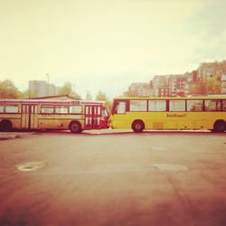 RättBuss <3 Guldbussen