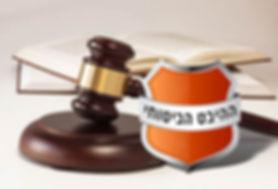 ההיבט-הביטוחי-בבדיקה-משפטית.jpg