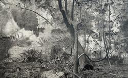 צילום רפרודוקציה של עפר רותם
