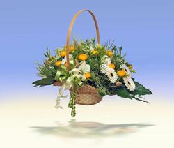 צילום פרחים בסטודיו לחנות פרחים