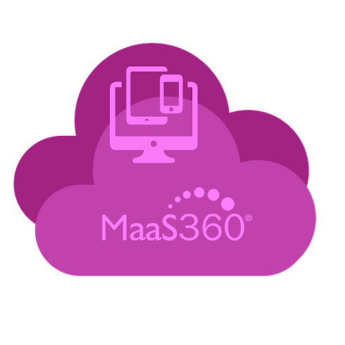 Maas360PPic_edited.png