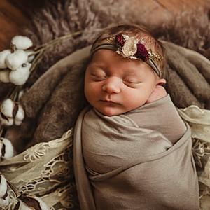 Lettie | Newborn