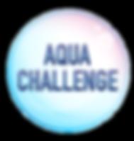 aqua fiesta banner 3ftx15ft-06.png