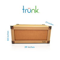 Trunk_microcontainer_size.png