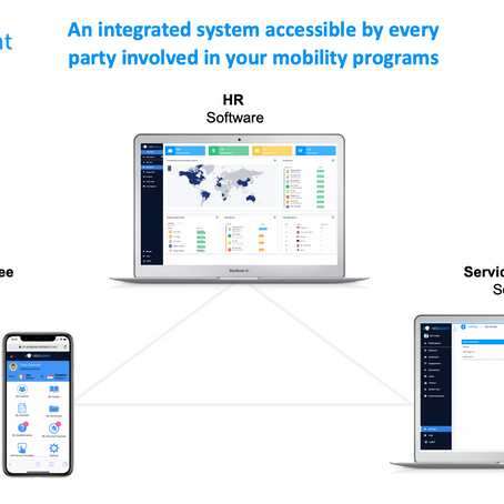 LuxRelo is Using Latest Technology to Support Mobility Teams & Transferees