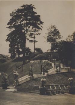 old garden steps