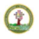 NewVida logo