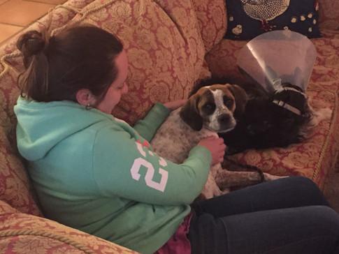 Dog daycare cuddles
