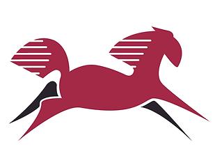 Red&Black Pony.tif