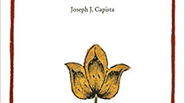 review: intrusive beauty by joseph j. capista