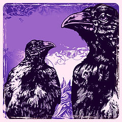 vultures%20copy_edited_edited.jpg