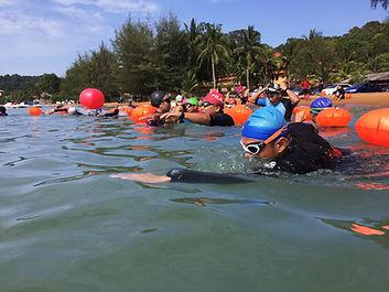 Open water clinics with MySwim Coaching