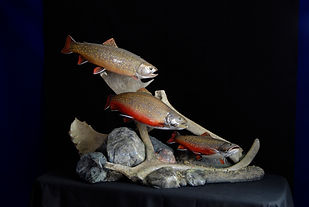 Weick's Taxidermy Unlimited Trout Trio Skin Mount