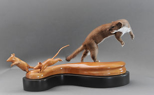 Weick's Taxidermy Unlimited Long Tail Weasel Mount