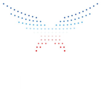 PF-DRONE-LIGHT-SHOWS-logo.png