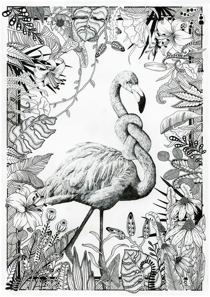 Uheldig flamingo
