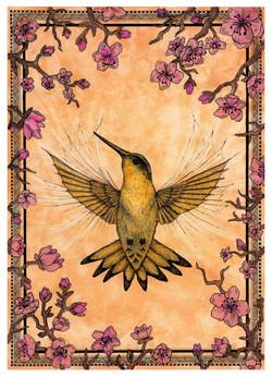 fugl liten fil