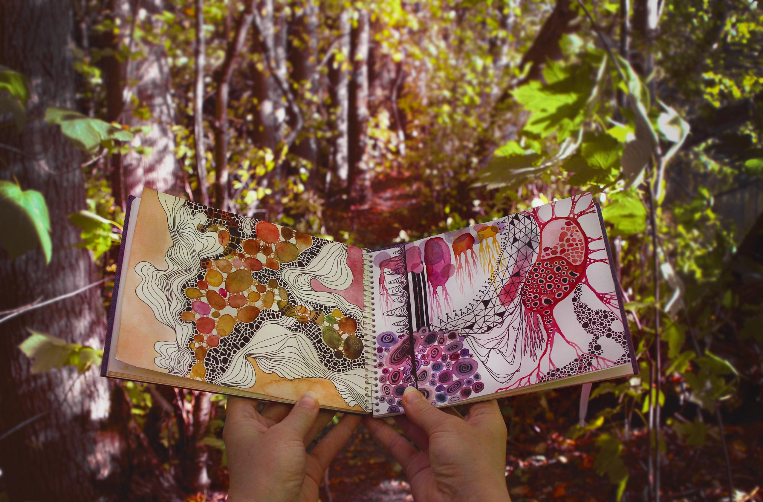 Inspirasjon i skogen