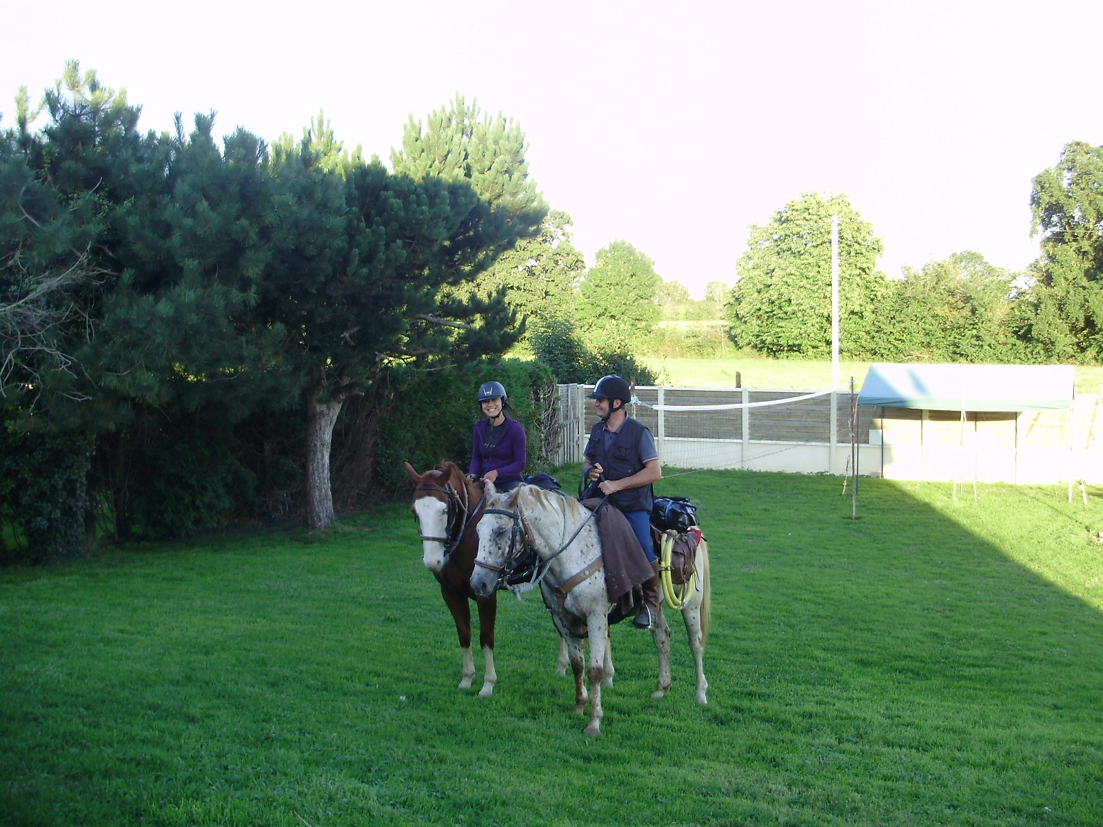 cheval au camping 2.JPG