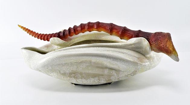 Cornu Amber