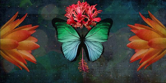 Butterfly, 2021