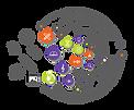 orb_logo.png